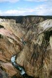 Barranca magnífica del parque nacional de piedra amarillo Fotos de archivo libres de regalías