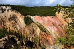 Barranca magnífica del parque nacional de piedra amarillo Fotografía de archivo