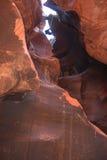 Barranca que sube en el parque de Zion Fotos de archivo