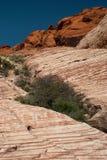 Barranca roja de la roca, Nevada Imagen de archivo