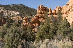 Barranca roja, Utah Foto de archivo libre de regalías