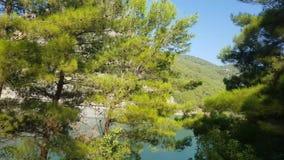 Barranca verde en Turquía almacen de metraje de vídeo