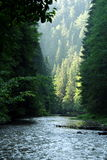 Barranca y río en Eslovaquia 1 fotos de archivo