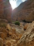 Barranco blanco de las piedras con follaje y sol verdes imagen de archivo