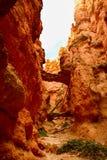Barranco de Bryce, ut imagen de archivo