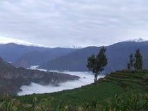 Barranco de Colca en una mañana de niebla Imagen de archivo libre de regalías