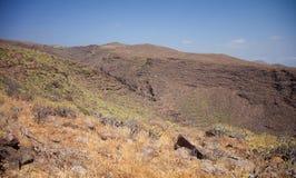 Barranco de Guayadeque Ravine, Gran Canaria Stock Photography