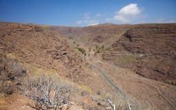 Barranco de Guayadeque Ravine, mamie Canaria Photo stock