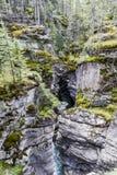 Barranco de Maligne, Jasper National Park, Alberta, Canadá Fotografía de archivo libre de regalías