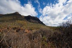 Barranco de Masca Luz y sombra El ir de excursión en el volcán Imágenes de archivo libres de regalías