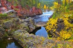 Barranco de Oulanka en otoño. Fotos de archivo libres de regalías