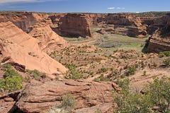 Barranco del desierto en primavera Imágenes de archivo libres de regalías