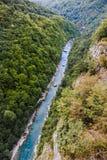 Barranco del río Tara imágenes de archivo libres de regalías