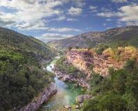 Barranco del río Tara en Montenegro Imagen de archivo libre de regalías