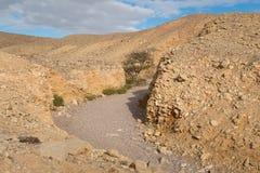 Barranco rojo que visita en las montañas de Eilat Foto de archivo
