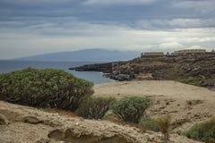 Barranco típico que rodea por el balsamifera endémico canario en Adeje, el sur del euforbio del milkweed de Tenerife, islas Canar imágenes de archivo libres de regalías