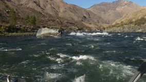 Barranco upriver Idaho de los infiernos del pov el río Snake del barco del jet almacen de video