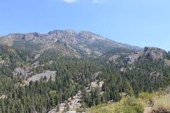 Barranco y Mountain View, High Sierra Nevada Mountains, California de los tallarines Imágenes de archivo libres de regalías