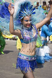 Carnaval Obrazy Royalty Free