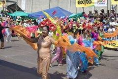 Carnaval Obrazy Stock