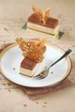 Barras da musse de chocolate da manteiga de amendoim foto de stock royalty free