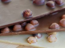 Barras de chocolate deliciosas com avelã imagem de stock