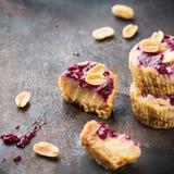 Barras de energía de la proteína o pasteles de queso crudos hechos a mano, bocado sano del superfood imágenes de archivo libres de regalías