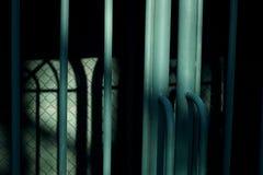 Barras de metal verdes Fotografía de archivo libre de regalías