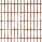 Barras de oxidação da prisão Imagens de Stock Royalty Free