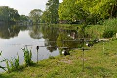 Barras de pesca Imagen de archivo