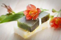Barras del jabón con los ingredientes naturales Fotos de archivo libres de regalías