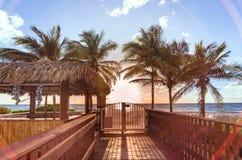 Barre de belvédère entourée par des palmiers dans une plage de Miami Photographie stock libre de droits
