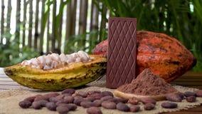 Barre de chocolat foncée, fruit cru de cacao, haricots de cacao, poudre de cacao sur la table en bois clips vidéos