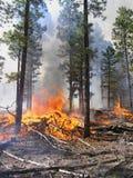 Barre de fraction brûlante Photos stock