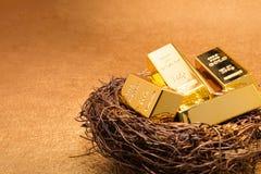 Barre di oro sul nido immagine stock
