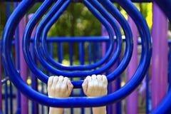 Barre di scimmia Fotografia Stock