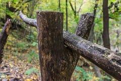 Barre en bois putréfiée Images libres de droits