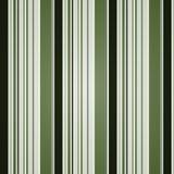 Barre le fond - vert/vert olive Photo libre de droits