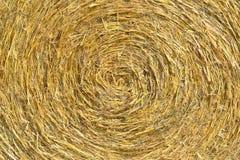 Barre rotonde del fieno Fotografia Stock