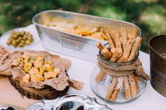 Barre salée et de fromage de plusieurs genres de fromage, raisins, olives Photographie stock