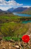 Barrea lake in the spring season Stock Photos