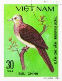 Barred Cuckoo-dove (Macropygia unchall), Doves serie, circa 1981. MOSCOW, RUSSIA - SEPTEMBER 26, 2018: A stamp printed in Vietnam shows Barred Cuckoo-dove ( royalty free stock photos