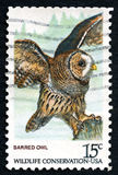 Barred Owl US Postage Stamp Stock Photos
