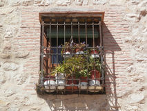 Barred window with dried flowers Stock Photography