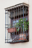 Barred window with houseplants Stock Images