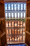 Barred window. With picturesque background Royalty Free Stock Photo