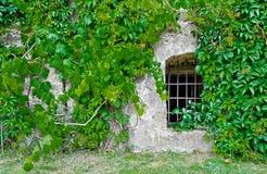 Barred window Royalty Free Stock Photo