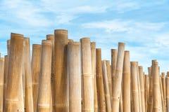 Barreira de bambu Fotografia de Stock