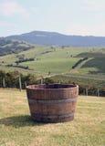 barrel виноградины Стоковые Изображения