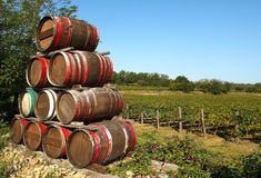 Barrel. Franciacorta (Bs),Lombardy,Italy,barrels of wine on the edge of a vineyard Stock Image